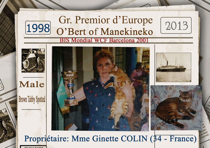 Gr Premior Europe- Manekineko's O'Bert - Mme Ginette Colin - Golden Dream x Bataro_ 1998 - 2013