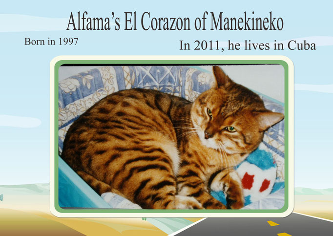 Alfama's El Corazon of Manekineko