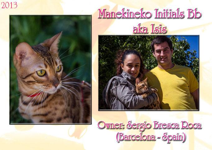 Manekineko Initials Bb, female 2013, owner: sergio, barcelona