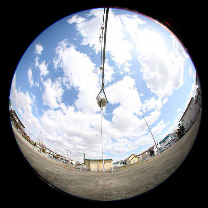 青の日々3/見上げるアンテナ