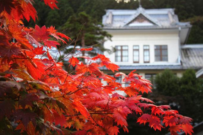 Herbststimmung in Nikko