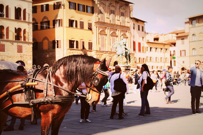 Domplatz Florenz