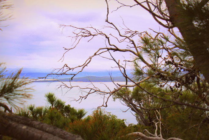 Freycinet Nationalpark in Tasmanien