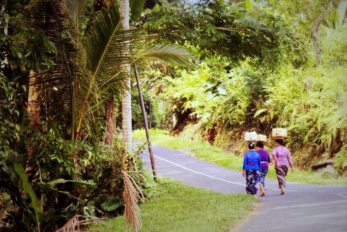 Auf den Straßen Balis