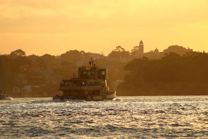 Fähre in Sydney