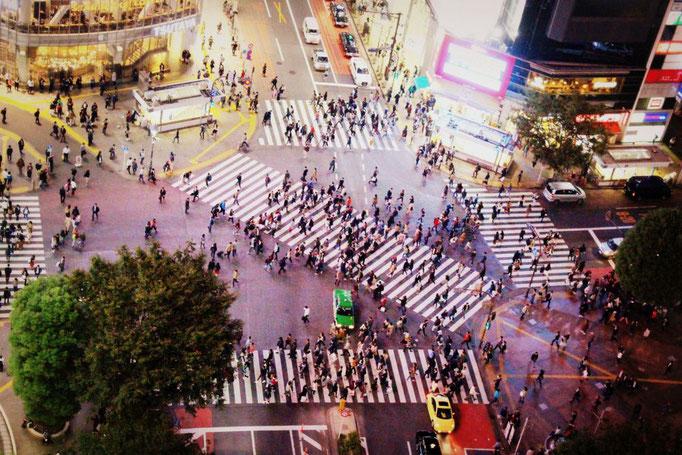 Shibuya Crossing bei Nacht
