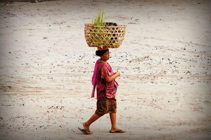 Balanceakt auf Nusa Lembongan