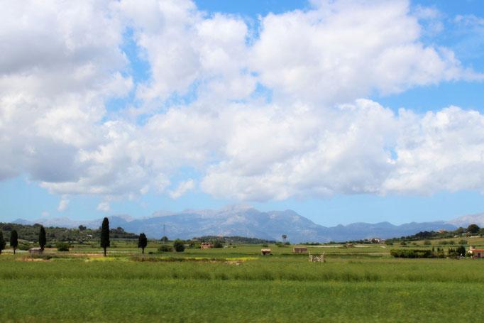 Landschaft bei Santa Margalida
