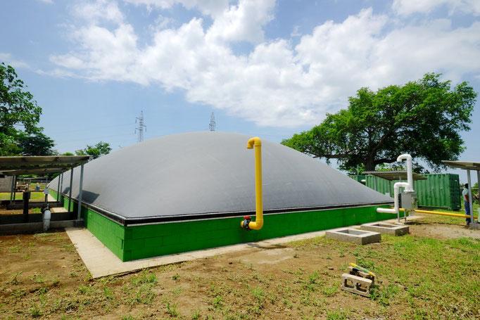 Biodigestor - estiércol de ganado lechero - planta de biogás