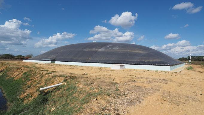 Biodigestor aprovechamiento de purines de cerdo y residuos de matadero - V = 4500 m3