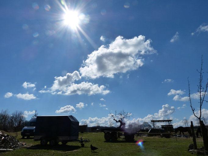Blick auf den Hof nach Süden. Wir haben schönsten Sonnenschein.