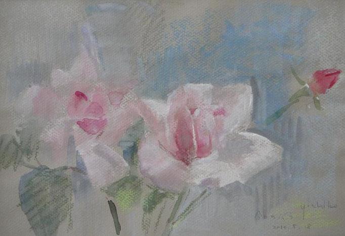 ある日のバラ (ラ・フランス)  4号  パステルと水彩  我が家のバラです。(個人蔵)