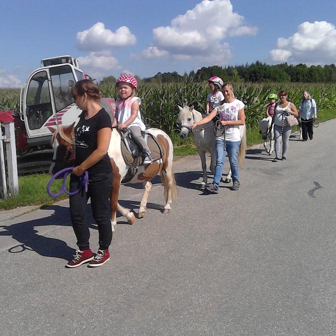 Ponywanderung 2