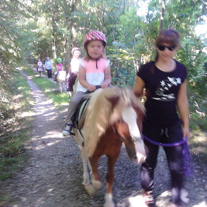 Ponywanderung 1