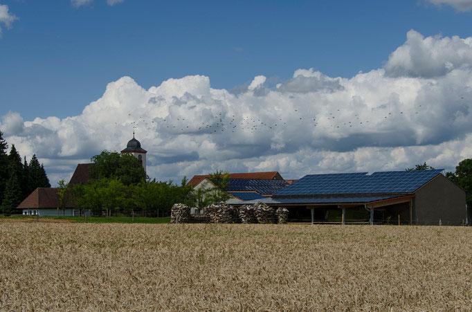 Gnodstadt, KT