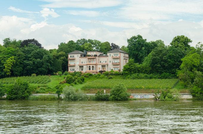 Herrliche Villen säumen das Rheinufer, um darin zu wohnen ist ein adäquates Einkommen bzw. Bankkonto notwendig