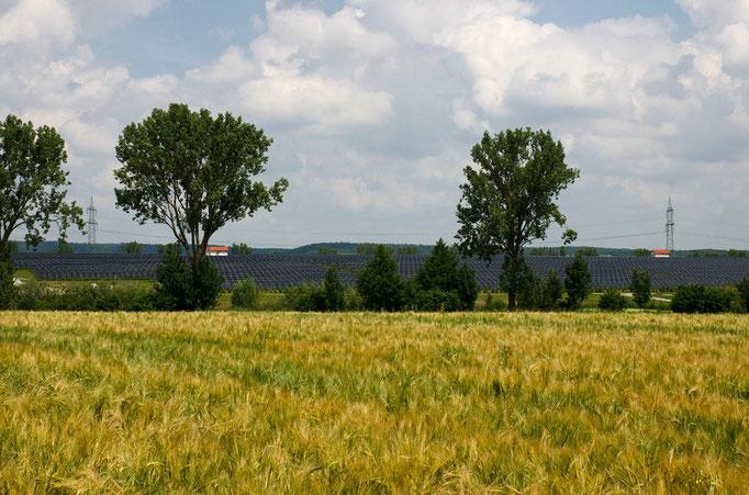 Buchheim, NEA