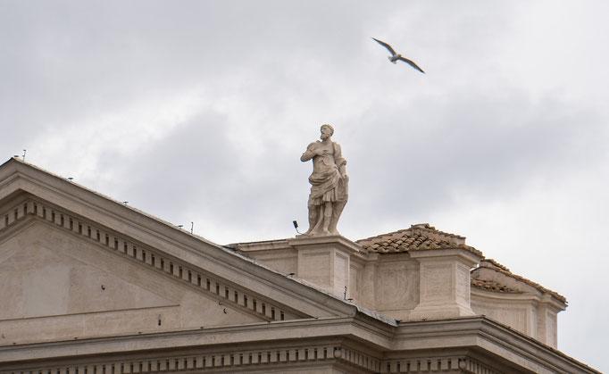 Eine Möwe gleitet über den Petersplatz