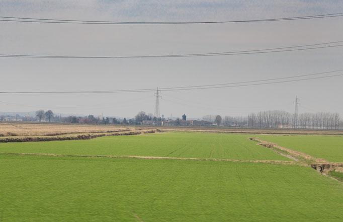 Die Reisfelder der Po-Ebene