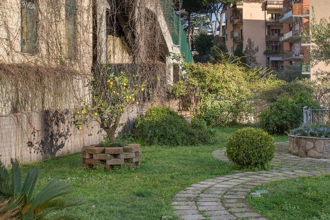 Eine kleine Parkanlage mit Zitronenbäumchen direkt am Hotel