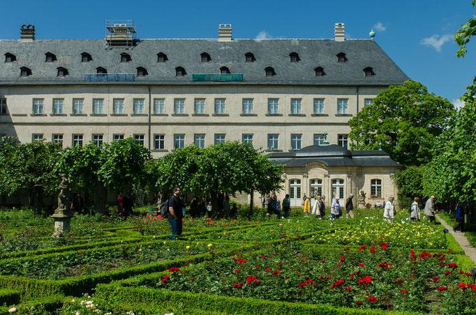 Rosengarten in der Neuen Residenz
