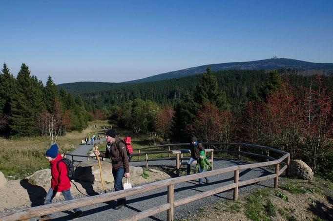 Wanderweg hinauf zum Brocken