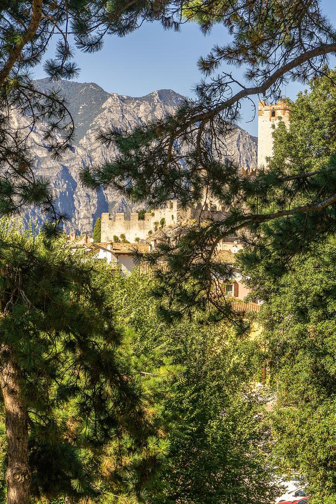 Hinter Bäumen versteckt das Castello Scaligero