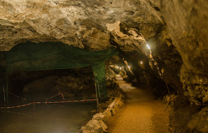 Eine Netzsperre die zum Zählen und Überprüfen der verschiedenen Fledermausarten die in großer Anzahl die Höhle bewohnen.