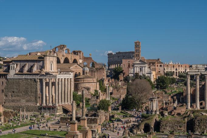 Das Forum Romanum, im Hintergrund das Kolosseum