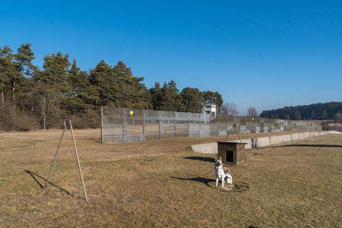Metallgitterzaun, Hunde-Laufanlage, PkW Sperre
