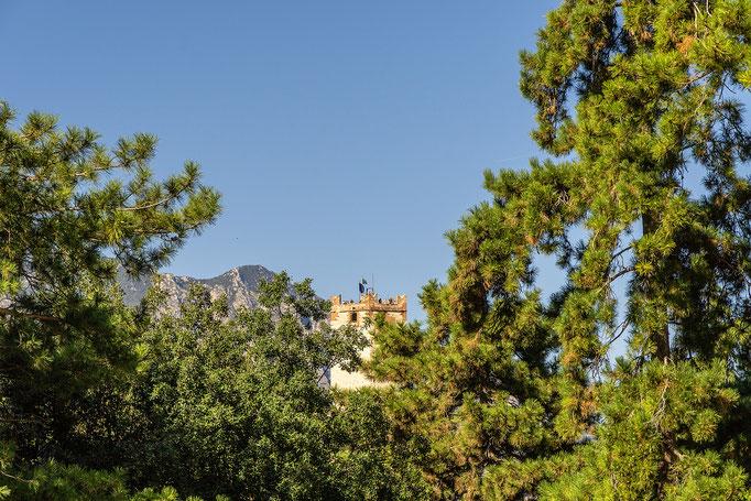 Zwischen Kiefern und Olivenbäumen spitzt der Turm des Castello Scaligero hervor