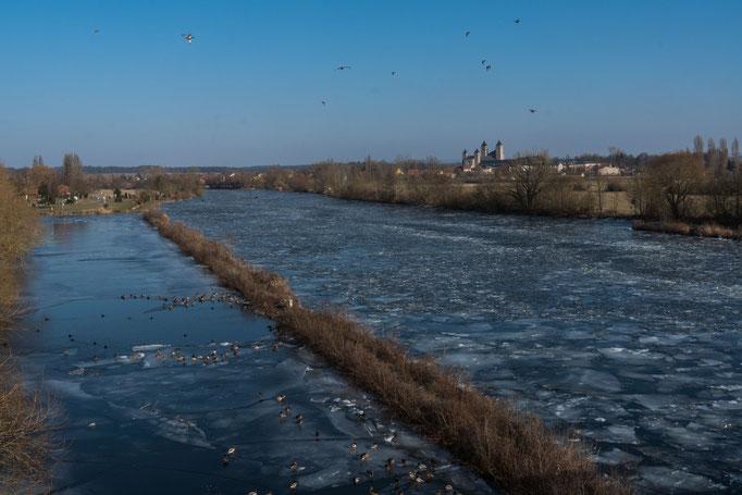 """Wasservögel auf dem """"Eisigen Main"""" bei Schwarzenau vor der Turmkulisse des Schwarzacher Münsters"""