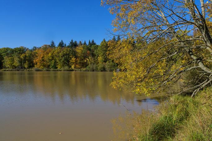 Am großen Wolfsee