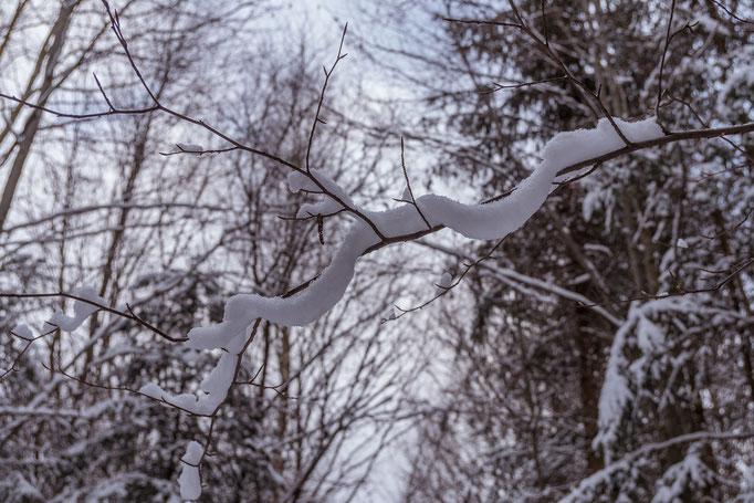 Schlange aus Eis und Schnee