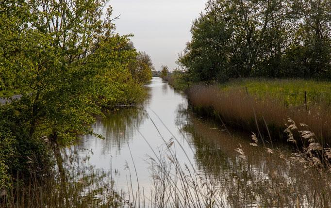 Süderbootfahrt, dieser Kanal war die Verbindung zwischen Garding und dem Meer.
