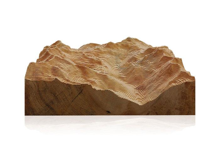 Reviermodelle von gebirgsrevier.at