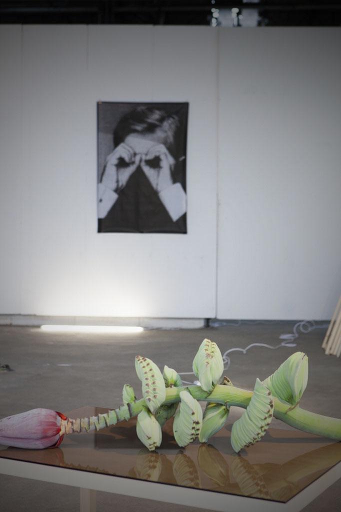 installation view - Ana Roldan