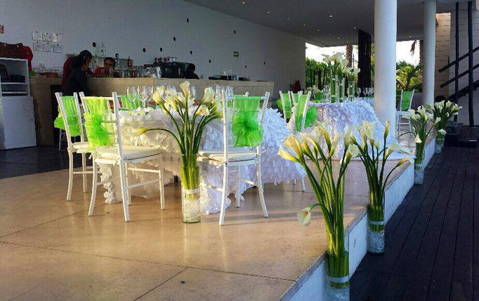 Green and Flamingo Wedding at Grand Coral