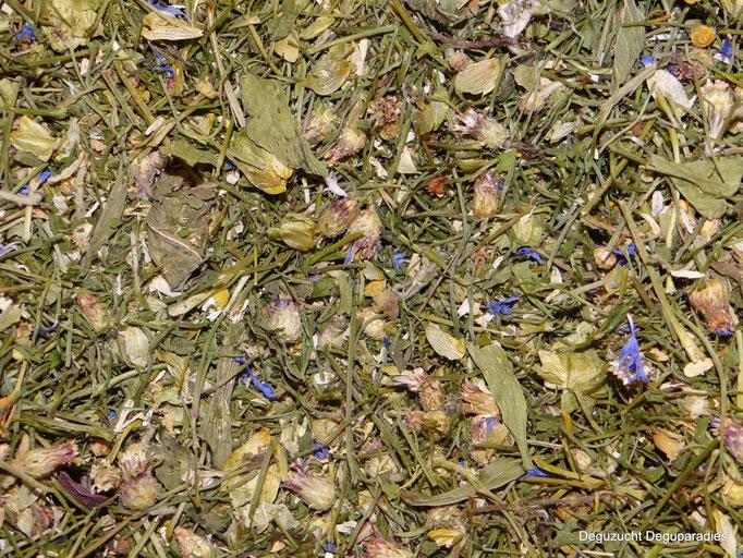 Zusammensetzung:Kornblumen blau, Petersilienstiele, Spitzwegerich, Löwenzahn, Brennesel, Kamille und Hopfen