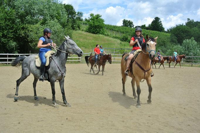 Horsemanship, Cowworking, Westernreiten