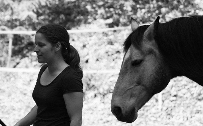 Horsemanship, Problempferde, Beritt,