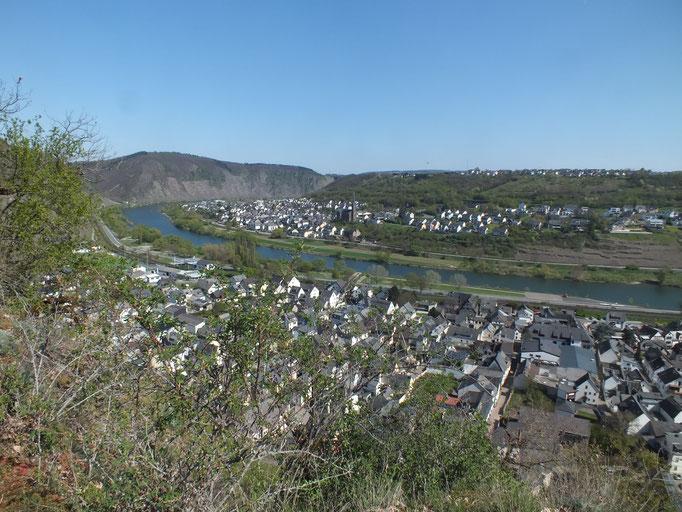 Blick vom Weg zwischen den Burgen auf die Mosel