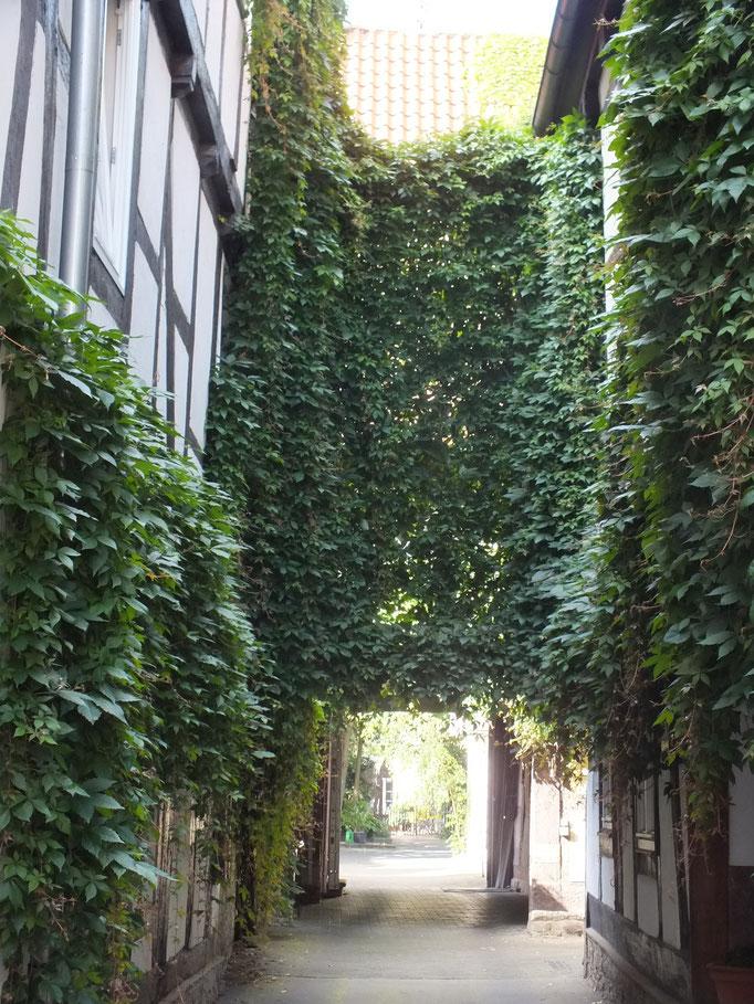 Altstadt, Blick in einen Hof