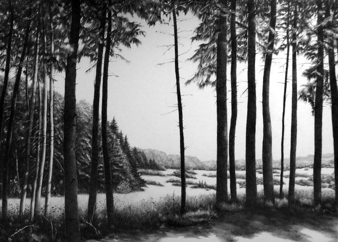 Eifel, Arft, 2017, Bleistift auf Karton, 70 x 100 cm