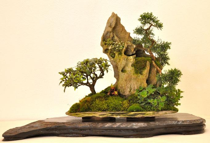 Ishizuki di Franco Bergamini