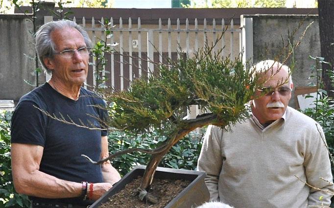 Demo di Mauro Brocchieri e Beppe Giovanelli - Ginepro sabina
