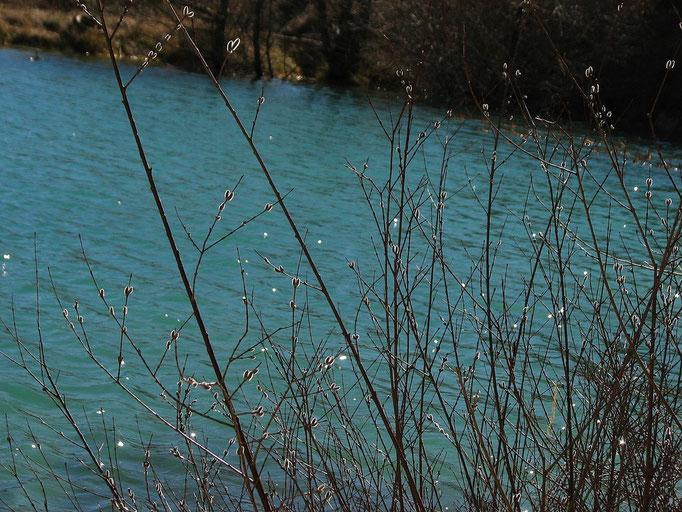 retenue d'eau a Vercoiran ( Baronnies )