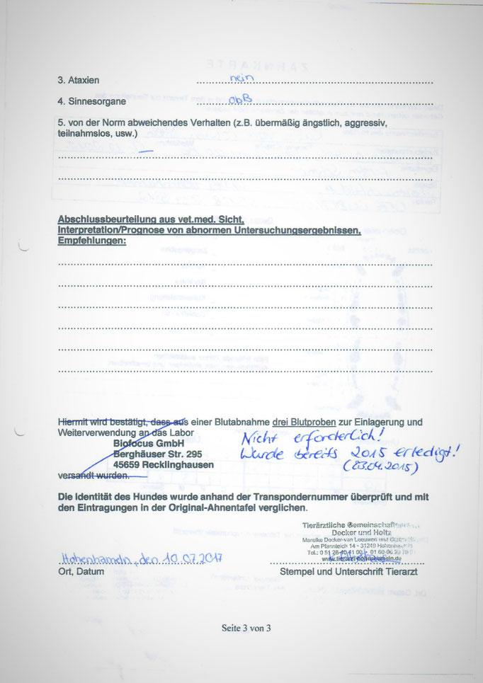 Kabous tierärztliche Untersuchung am 10.07.2017 anlässlich der seiner Körung - 3. Seite