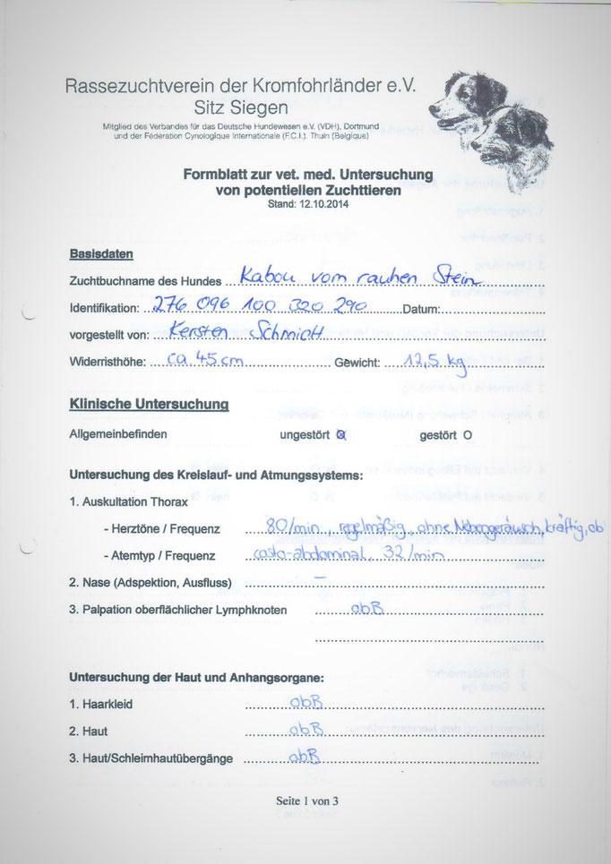 Kabous tierärztliche Untersuchung am 10.07.2017 anlässlich der seiner Körung - 1. Seite