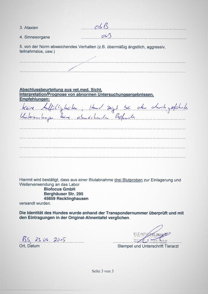 Kabous tierärztliche Untersuchung am 23.04.2015 anlässlich der damals geplanten Körung - 3. Seite